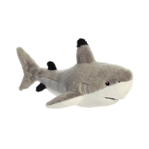 Eco Nation | Blacktip Shark