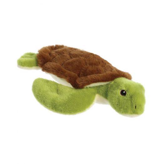 Eco Nation | Turtle