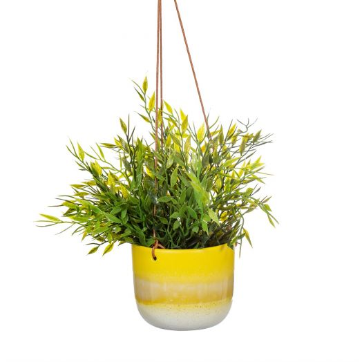 Sass And Belle | Mojave Planter - Yellow