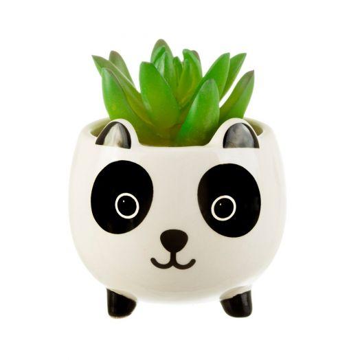 Sass and Belle |Mini Panda Planter