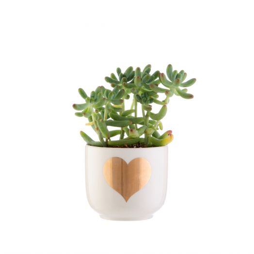 Sass and Belle | Mini Gold Heart Planter
